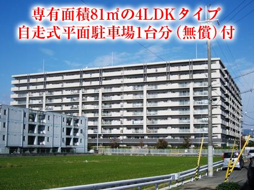 【中古マンション】エステムコート高槻グラジオス!ペット飼育可!